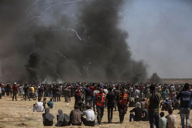 Van de Jerusalem: Lien hop quoc quan ngai tinh hinh bao luc tai Gaza hinh anh 1
