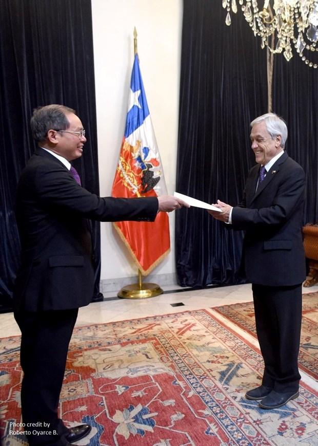 Tong thong Chile danh gia cao thanh tuu kinh te cua Viet Nam hinh anh 2