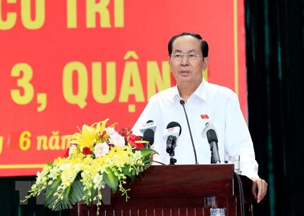 Chu tich nuoc tra loi cu tri ve Luat Dac khu, Luat An ninh mang hinh anh 1
