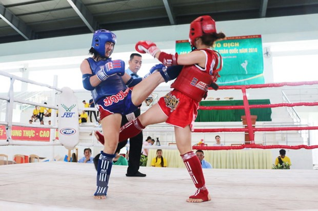 Giai Muay toan quoc: Thanh pho Ho Chi Minh nhat toan doan hinh anh 1
