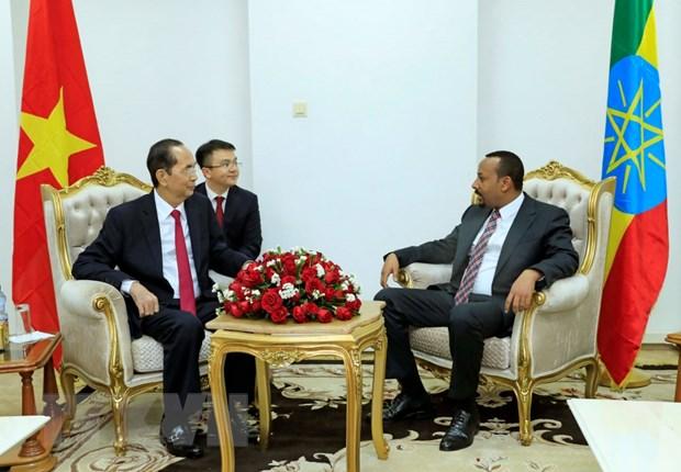 Chu tich nuoc Tran Dai Quang hoi kien voi Thu tuong Ethiopia hinh anh 1