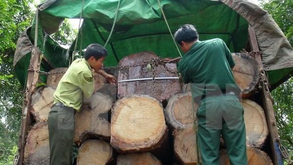 Dak Nong: Xu ly nghiem doi tuong cam dao ruot duoi kiem lam hinh anh 1