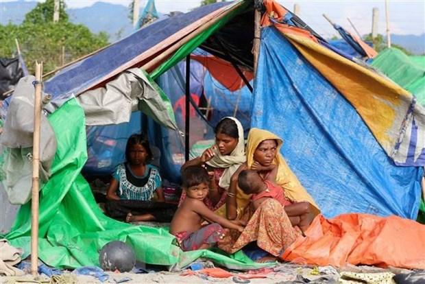 Bangladesh co the hoan ke hoach hoi huong nguoi Rohingya hinh anh 1