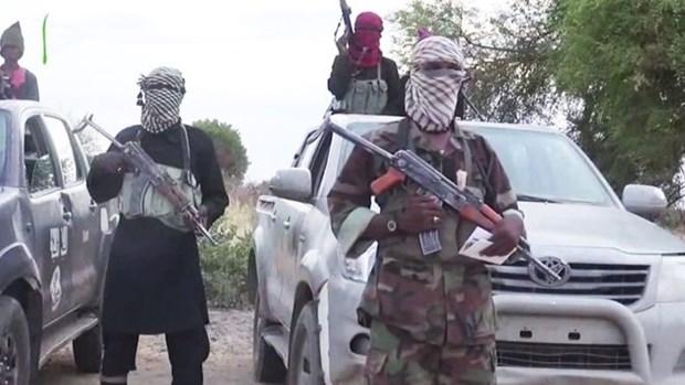 Nigeria: Di kiem cui, hang chuc nguoi bi Boko Haram bat coc hinh anh 1