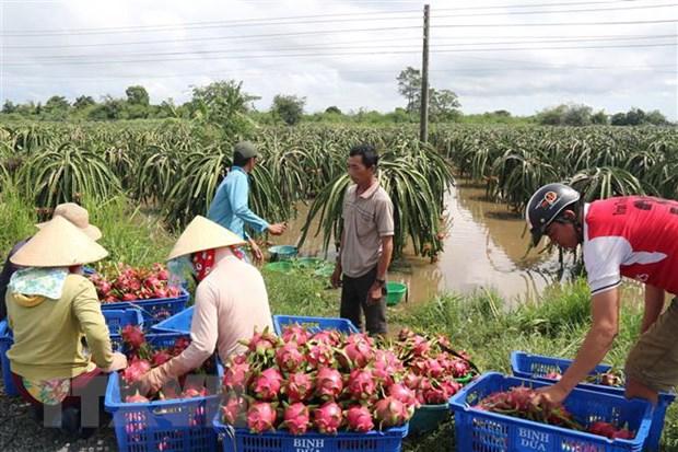 Binh Thuan: 200 ho dan o huyen Ham Thuan Nam bi co lap do mua lu hinh anh 2