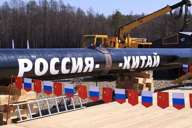 Tong thong Putin: Hop tac nang luong Nga-Trung phat trien tich cuc hinh anh 1