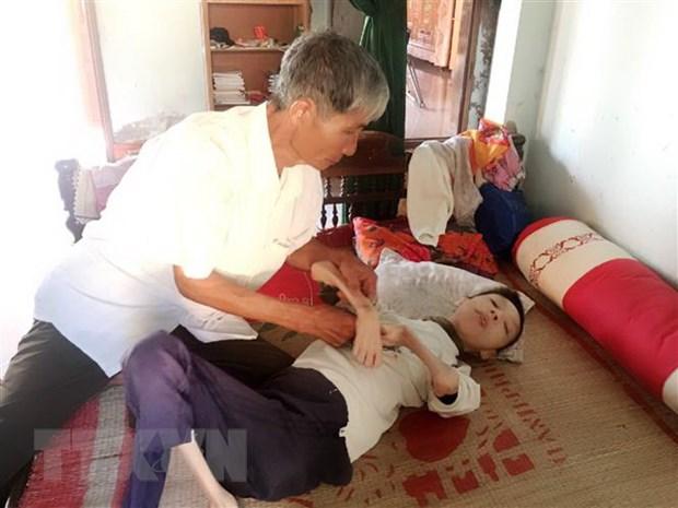 Viet Nam-Nhat Ban tang cuong phoi hop tro giup nan nhan dioxin hinh anh 1