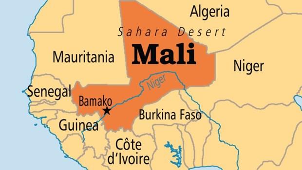 Dung do sac toc o Mali, cac tho san sat hai 33 nguoi chan tha gia suc hinh anh 1