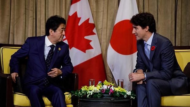 Canada va Nhat Ban ban giai phap xuc tien co hoi do CPTPP mang lai hinh anh 1