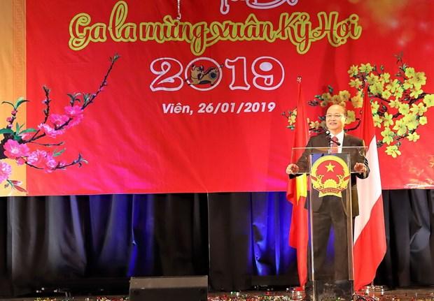 Dem Gala mung Xuan Ky Hoi cua cong dong nguoi Viet tai Cong hoa Ao hinh anh 1