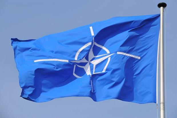 Nhung van de nong duoc thao luan tai Hoi nghi Bo truong NATO hinh anh 1