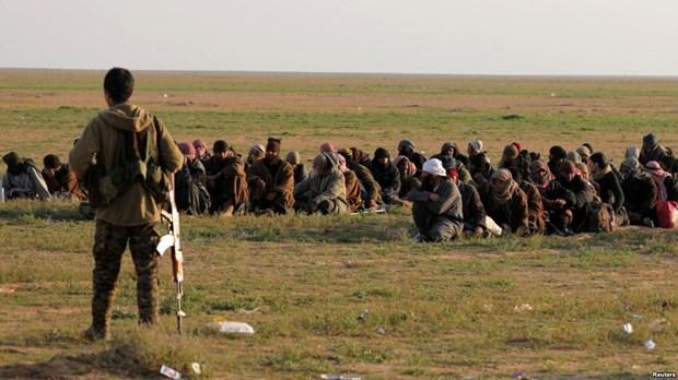 Chuyen giao 280 phien quan IS bi bat tai Syria cho Bo Noi vu Iraq hinh anh 1