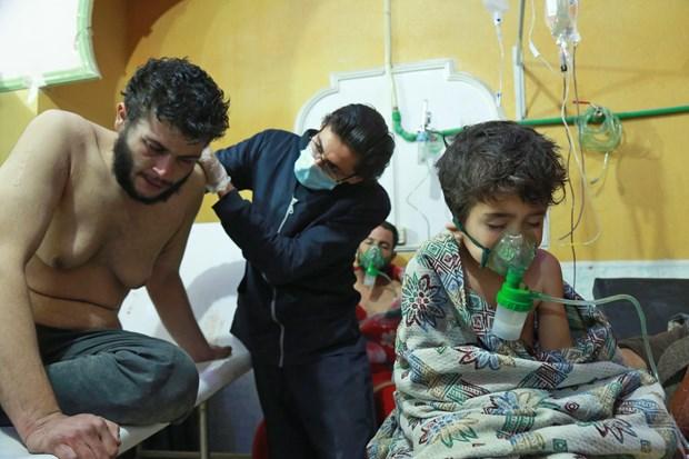 Hoi dong Bao an thao luan van de su dung vu khi hoa hoc o Syria hinh anh 1