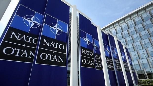 Thanh vien NATO tap tran chi huy mo phong tren may tinh tai Gruzia hinh anh 1