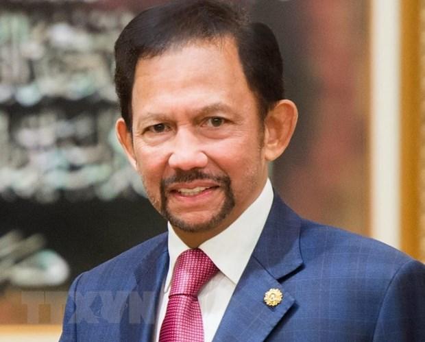 Quoc vuong Brunei Darussalam bat dau tham cap Nha nuoc toi Viet Nam hinh anh 1