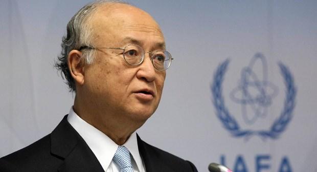 IAEA san sang giam sat tien trinh phi hat nhan hoa cua Trieu Tien hinh anh 1