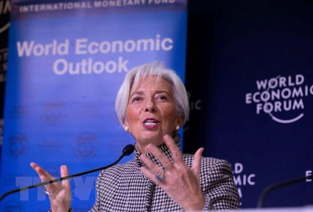 Hoi nghi mua Xuan IMF-WB: Kinh te the gioi doi mat voi bat trac lon hinh anh 1