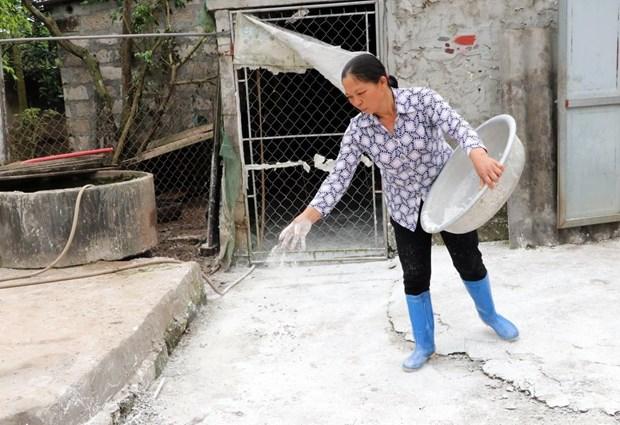 Dich ta lon chau Phi lan nhanh, Nam Dinh siet chat khau van chuyen hinh anh 1