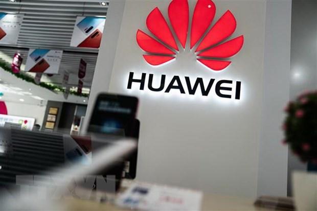 Huawei cung Google tim cach doi pho voi lenh cam cua Chinh phu My hinh anh 1