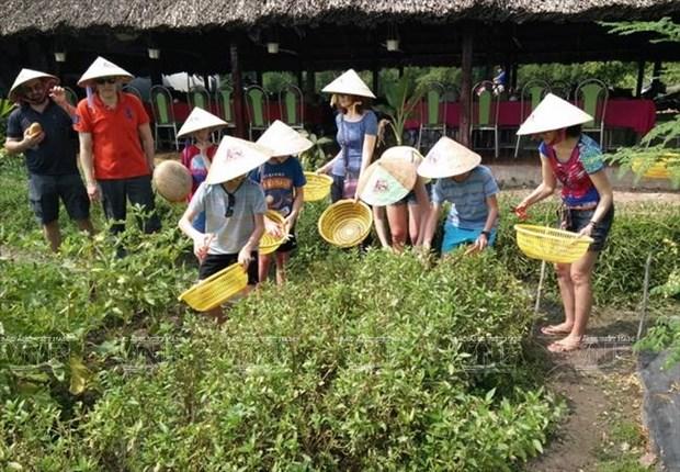 Tiem nang phat trien du lich nong nghiep, sinh thai o TP Ho Chi Minh hinh anh 1