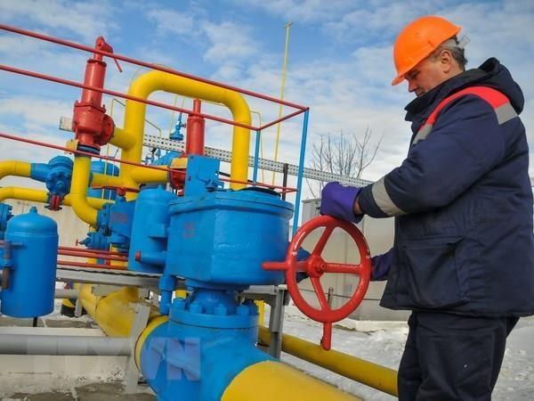 EU-Nga hy vong giai quyet van de trung chuyen khi dot qua Ukraine hinh anh 1