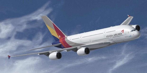 Hang hang khong Asiana Airlines se duoc rao ban trong thang toi hinh anh 1