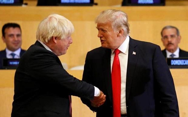 Tong thong My Trump dien dam voi tan Thu tuong Anh Boris Johnson hinh anh 1
