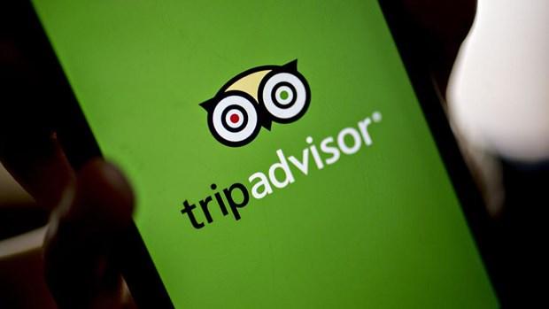 Trang du lich TripAdvisor vuong nghi an danh gia gia mao hinh anh 1