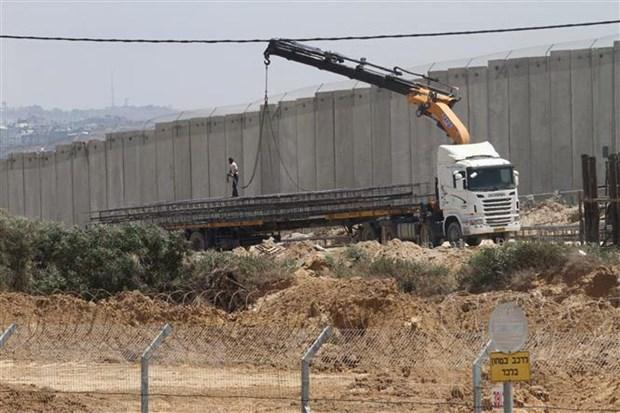 Phai doan Ai Cap toi Gaza lam trung gian hoa giai giua Israel va Hamas hinh anh 1