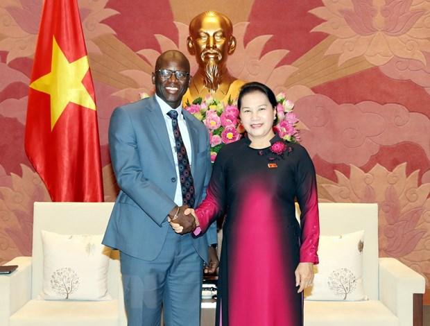 Chủ tịch Quốc hội Nguyễn Thị Kim Ngân tiếp Giám đốc Quốc gia Ngân hàng Thế giới tại Việt Nam Ousmane Dione. Ảnh: Trọng Đức/TTXVN