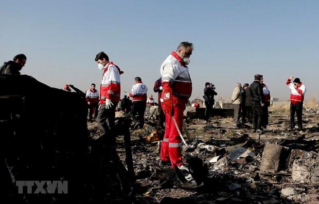 Iran bac bo thong tin may bay Boeing 737 cua Ukraine bi trung ten lua hinh anh 1
