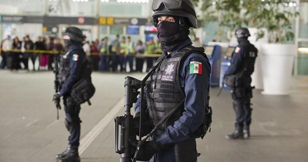 Thanh toan bang dang tai Mexico khien 19 nguoi thiet mang hinh anh 1