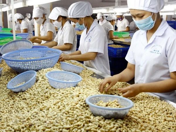 Hiep dinh EVFTA: Nang cao chuoi gia tri gia tang cho nong san Viet hinh anh 1