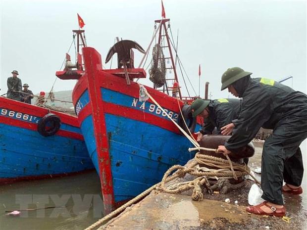 Bộ đội Biên phòng Nghệ An giúp ngư dân giằng néo tàu thuyền tránh bão. (Ảnh: Tá Chuyên/TTXVN)