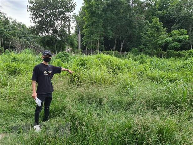 Binh Duong: Nhieu nguoi doi lai tien khi mua dat cua 'du an ma' hinh anh 2