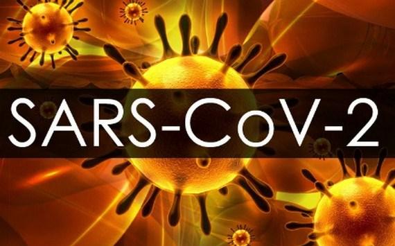 Thuy Si: Nghien cuu co che virus SARS-CoV-2 gay cuc mau dong hinh anh 1