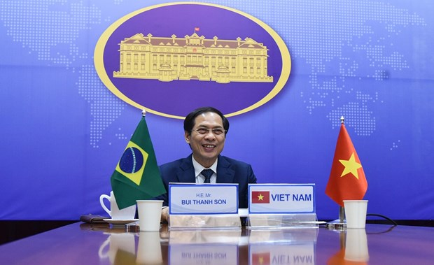Tham khao Chinh tri cap Thu truong Ngoai giao Viet Nam-Brazil hinh anh 1