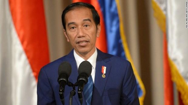 Tong thong Indonesia keu goi ASEAN tien hanh 'cach mang ky thuat so' hinh anh 1