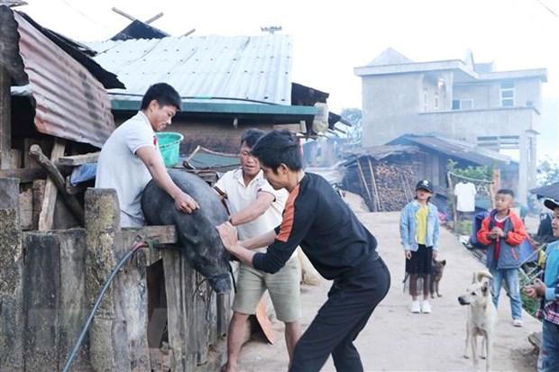 Doc dao phong tuc an Tet cua nguoi Ha Nhi vung bien gioi Muong Te hinh anh 1