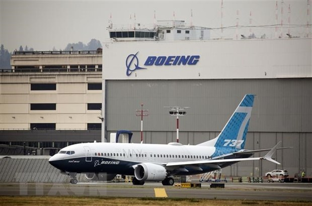 Brazil cho phep may bay Boeing 737 MAX hoat dong tro lai hinh anh 1