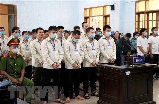 Gia Lai: Chu muu soi bac Hung 'sida' va 104 dong pham linh an hinh anh 1