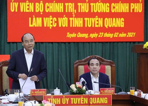 Thu tuong: Tuyen Quang tan dung loi the de phat trien nganh go hinh anh 1