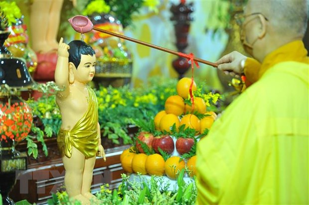 Tuan le 'Tam Phat online': Ung ho 200 trieu dong de phong, chong dich hinh anh 1
