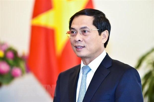 Bo truong Bui Thanh Son du Hoi nghi ve hop tac Vanh dai va Con duong hinh anh 1
