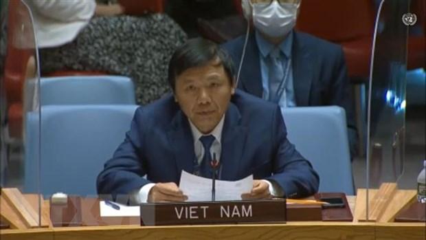 Viet Nam thuc day bao ve nhan vien nhan dao tai cac diem nong xung dot hinh anh 1