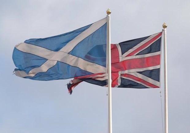 Anh se khong ngan can Scotland to chuc trung cau y dan ve doc lap hinh anh 1