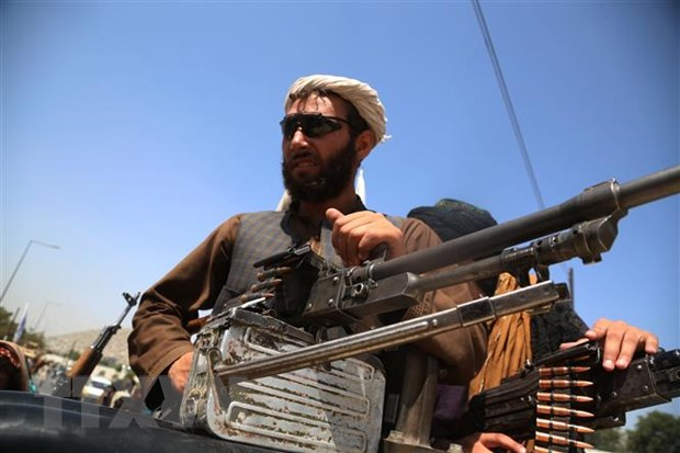 Tong Thu ky NATO: Chinh phu Afghanistan sup do nhanh khong ngo hinh anh 1