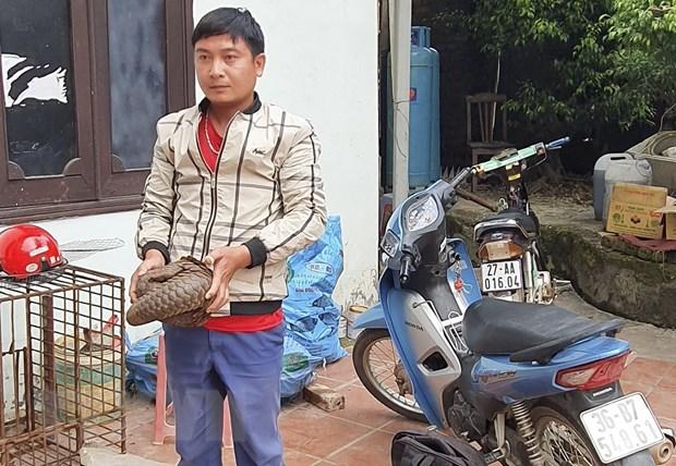 Dien Bien: Bat giu 2 doi tuong van chuyen trai phep dong vat hoang da hinh anh 1