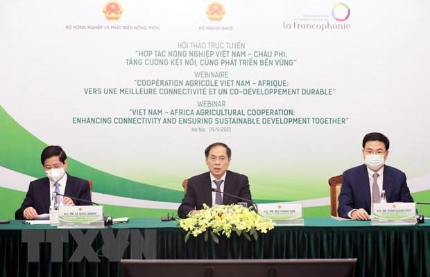 Bộ trưởng Ngoại giao Bùi Thanh Sơn phát biểu khai mạc hội thảo. (Ảnh: Lâm Khánh/TTXVN)