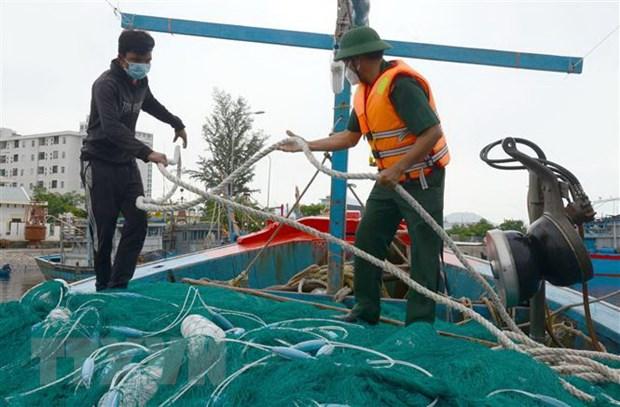 Bộ đội Biên phòng Đà Nẵng hỗ trợ ngư dân chằng chống tàu thuyền trước bão. (Ảnh: Quốc Dũng/TTXVN)